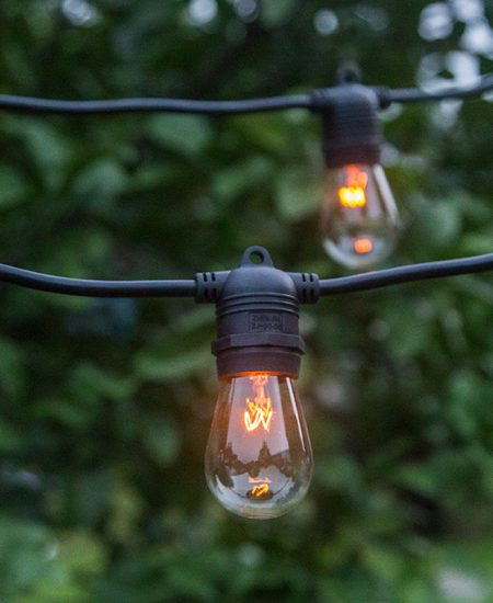 Festoon Party String Lights - Black Cable